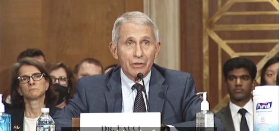 Le Dr Fauci ment à nouveau devant le Congrès américain
